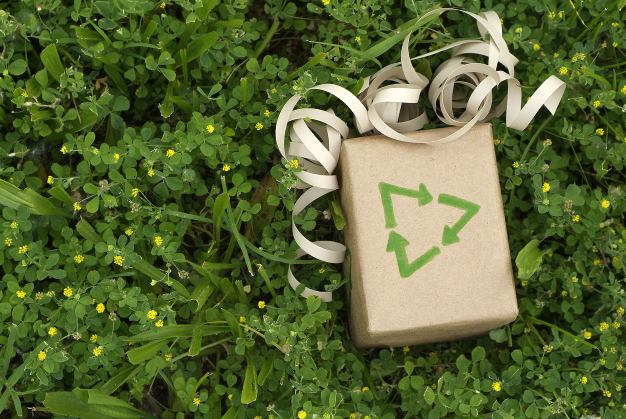 Sustainable Environmental Gift