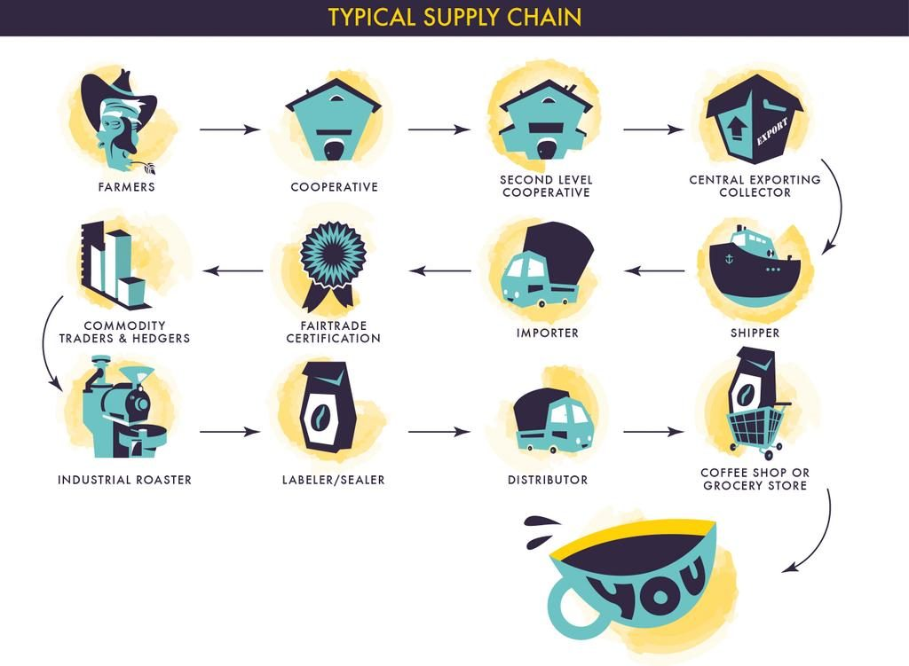 The Vega Coffee Review Supply Chain