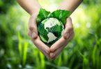 zero waste myth